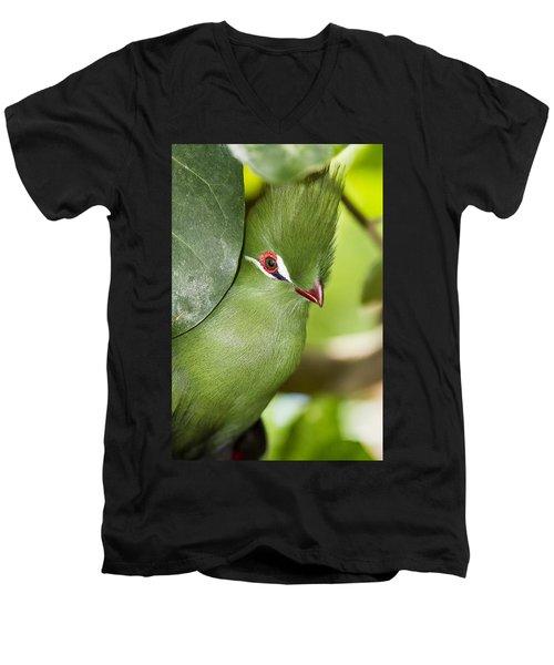 Green Turaco Bird Portrait Men's V-Neck T-Shirt