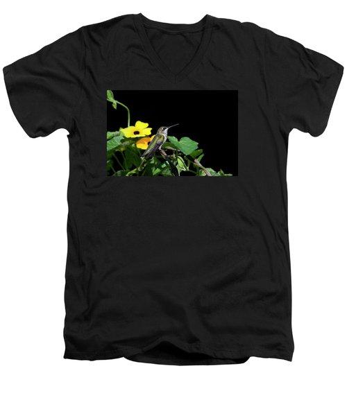 Green Garden Jewel Men's V-Neck T-Shirt