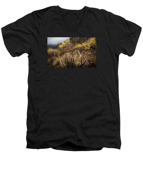 Green Mountain Dawn Men's V-Neck T-Shirt by John Poon
