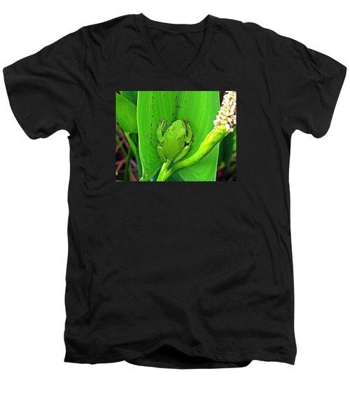 Green Tree Frog Men's V-Neck T-Shirt