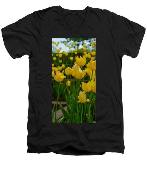 Grouping Of Yellow Tulips Men's V-Neck T-Shirt