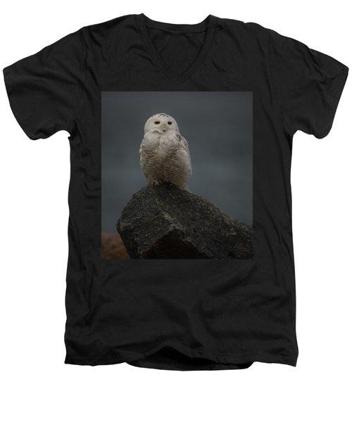 Guarding My Rock Men's V-Neck T-Shirt