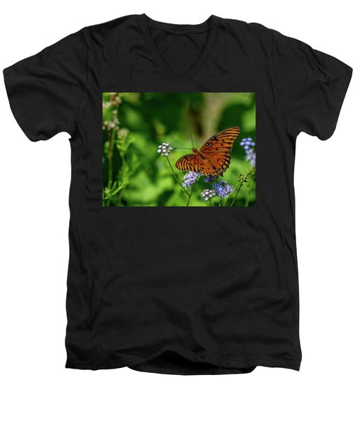 Gulf Fritillary Butterfly Men's V-Neck T-Shirt