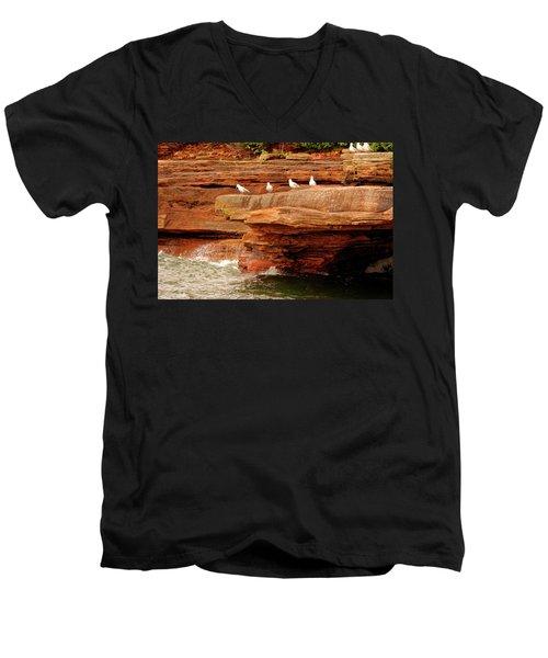 Gulls On Outcropping Men's V-Neck T-Shirt