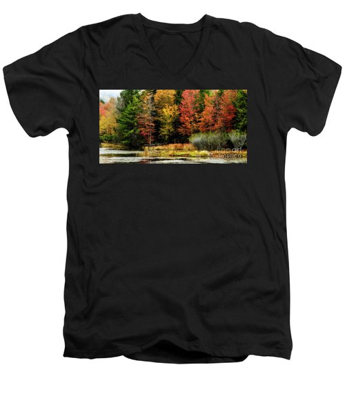 Handley Wildlife Managment Area Men's V-Neck T-Shirt