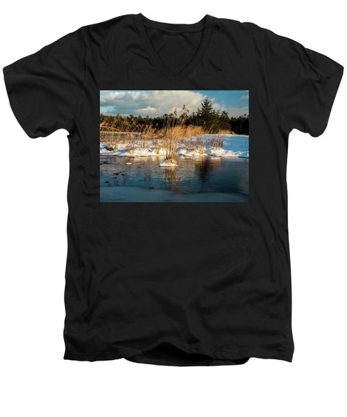Hard Frosts And Icy Drafts Men's V-Neck T-Shirt