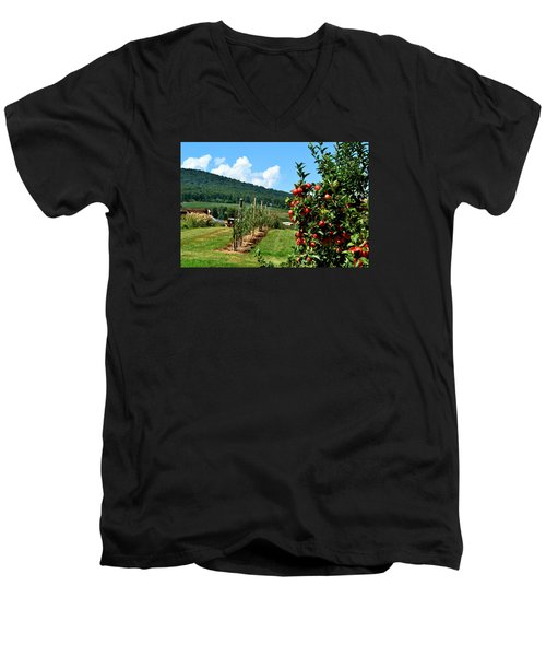 Harvest Time In The Catoctin Mountains Men's V-Neck T-Shirt