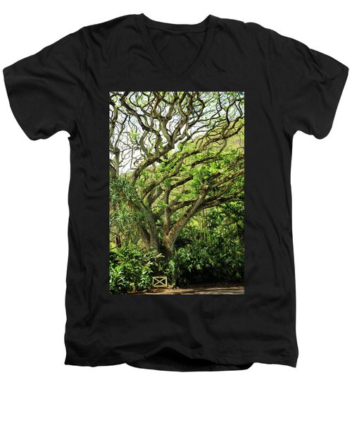 Men's V-Neck T-Shirt featuring the photograph Hawaii Tree-bard by Denise Moore