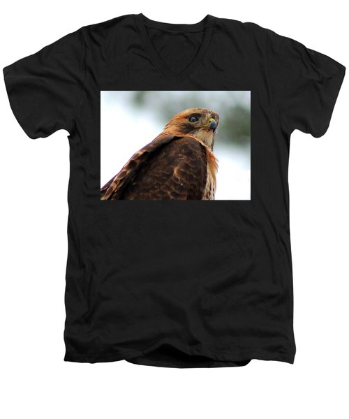 Men's V-Neck T-Shirt featuring the photograph Hawk by Bruce Patrick Smith
