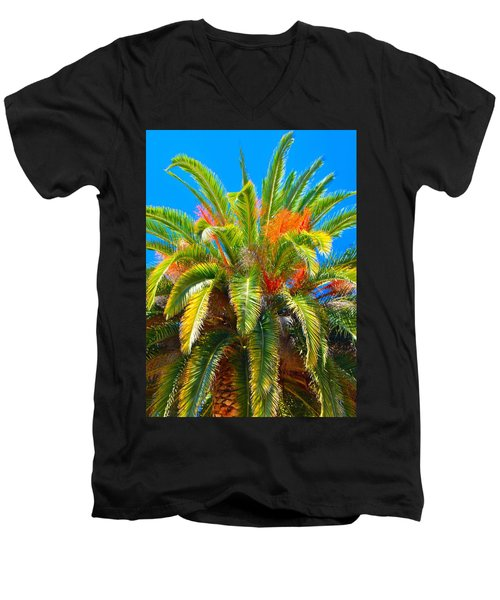 Head Dress Men's V-Neck T-Shirt by Josephine Buschman