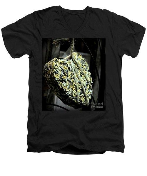 For The Love Of Birds Men's V-Neck T-Shirt