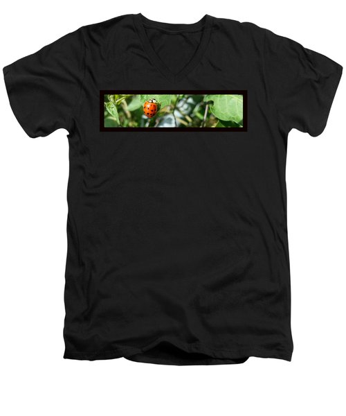 Men's V-Neck T-Shirt featuring the photograph Hello Lady by Robert Knight