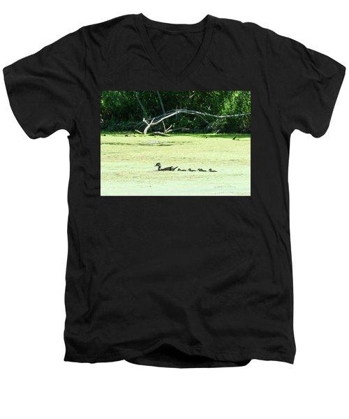Hen And Baby Wood Ducks Men's V-Neck T-Shirt