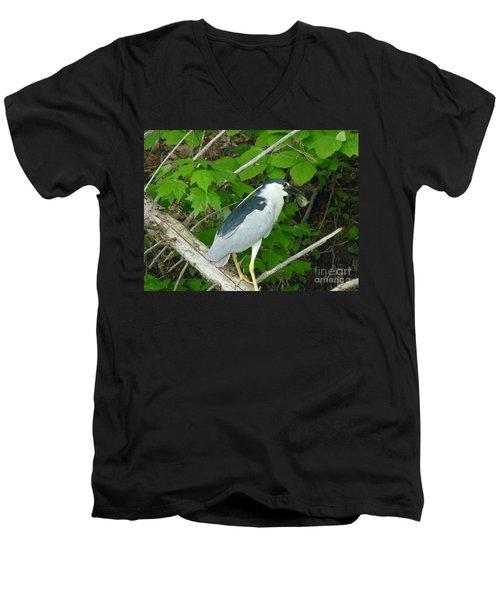 Heron With Dinner Men's V-Neck T-Shirt