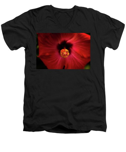 Hibiscus Men's V-Neck T-Shirt by Jay Stockhaus