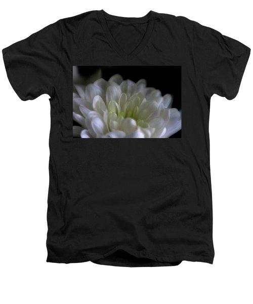 Hidden Heart Men's V-Neck T-Shirt