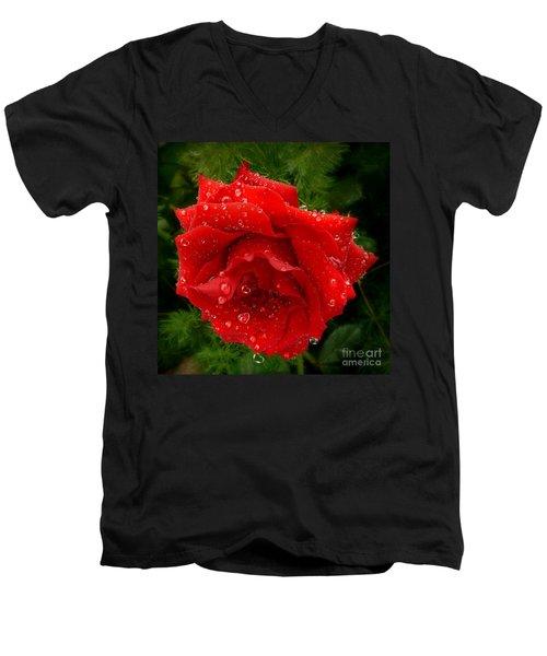 Hidden Hearts Men's V-Neck T-Shirt