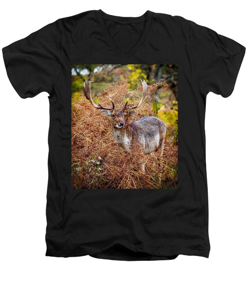 Men's V-Neck T-Shirt featuring the photograph Hiding In The Bracken by Nick Bywater