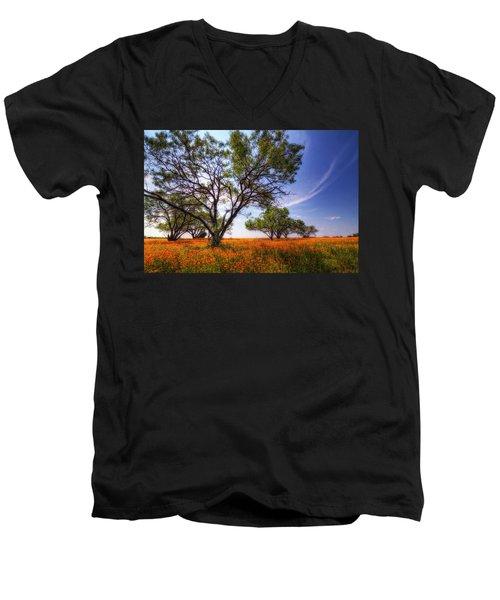 Hill Country Spring Men's V-Neck T-Shirt