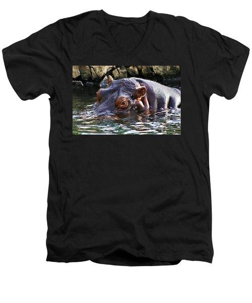 Hippo 3779_2 Men's V-Neck T-Shirt