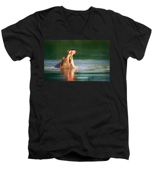 Hippopotamus Men's V-Neck T-Shirt by Johan Swanepoel