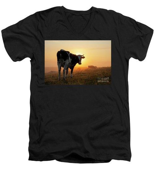 Holstein Friesian Cow Men's V-Neck T-Shirt