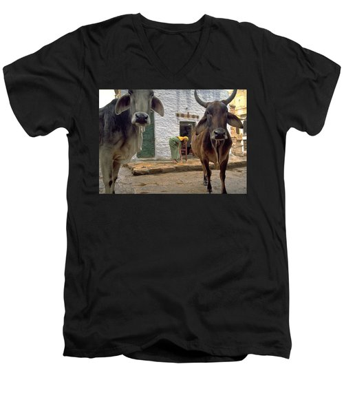 Holy Cow Men's V-Neck T-Shirt