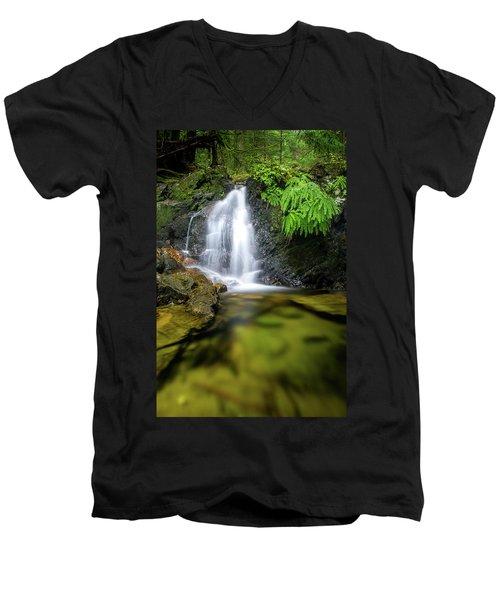 Homesite Falls Autumn Serenity Men's V-Neck T-Shirt