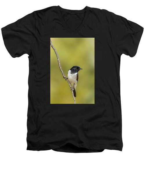 Hooded Robin Men's V-Neck T-Shirt