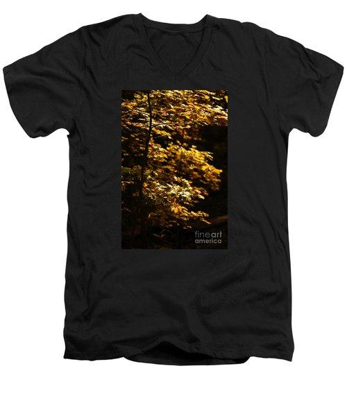 Hope Leaves Men's V-Neck T-Shirt by Linda Shafer
