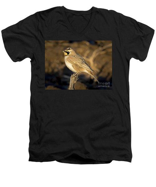 Horned Lark Men's V-Neck T-Shirt