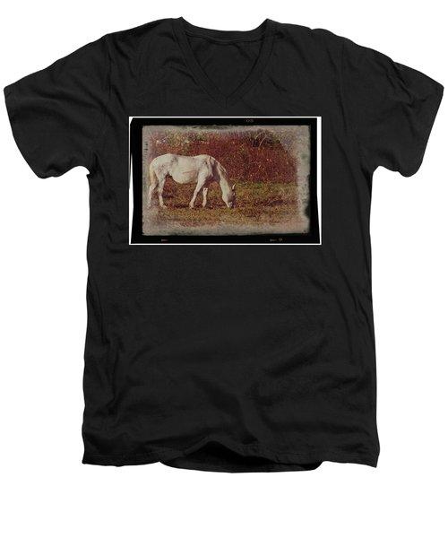 Horse Grazing Men's V-Neck T-Shirt