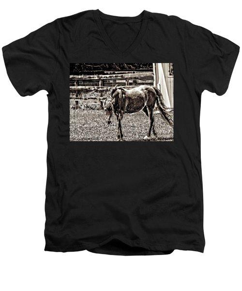 Horse In Black And White Men's V-Neck T-Shirt by Annie Zeno