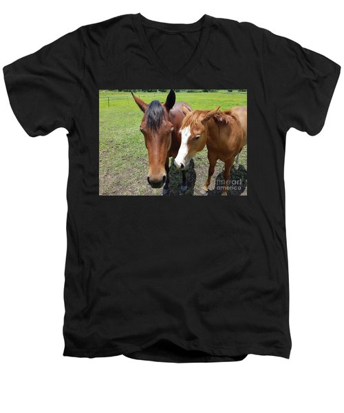 Horse Love Men's V-Neck T-Shirt