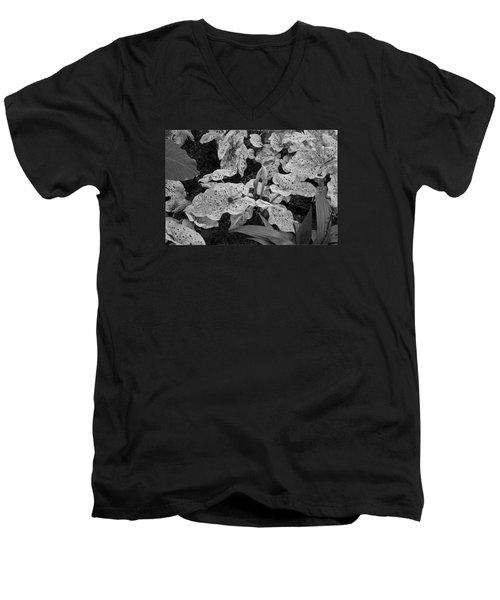 Hosta Bw - Pla363 Men's V-Neck T-Shirt by G L Sarti