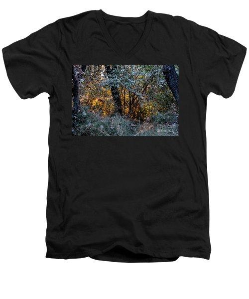 Hot Sunset In The Forest Men's V-Neck T-Shirt