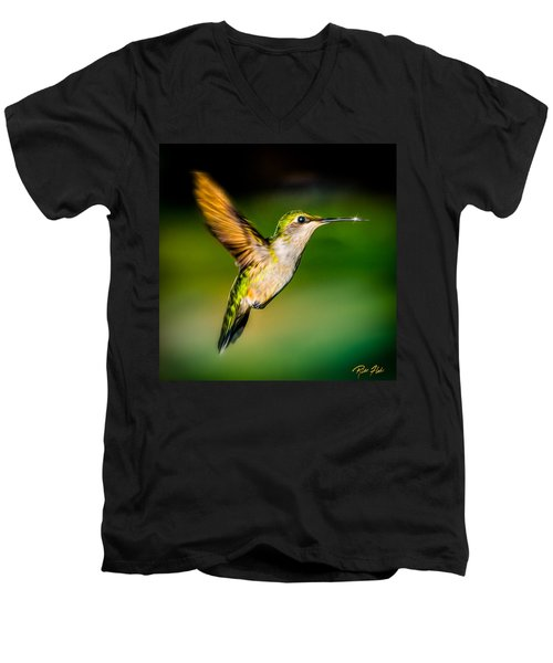 Hummingbird Sparkle Men's V-Neck T-Shirt