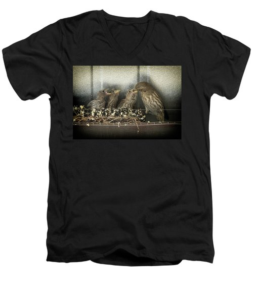 Men's V-Neck T-Shirt featuring the photograph Hungry Chicks by Alan Toepfer