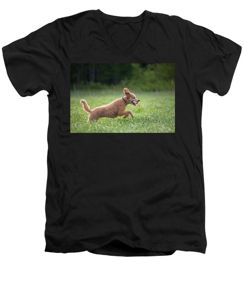 Hunting Dog Men's V-Neck T-Shirt