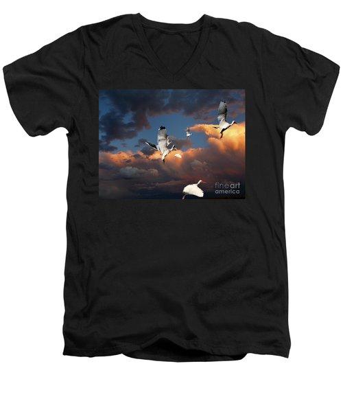 Ibis In Flight Men's V-Neck T-Shirt by Irma BACKELANT GALLERIES