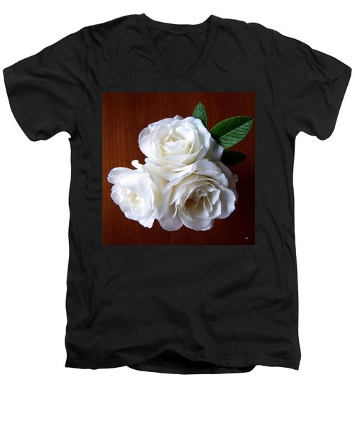 Iceberg Rose Trio Men's V-Neck T-Shirt by Will Borden