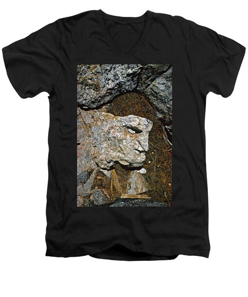 If Looks Could Grill Men's V-Neck T-Shirt