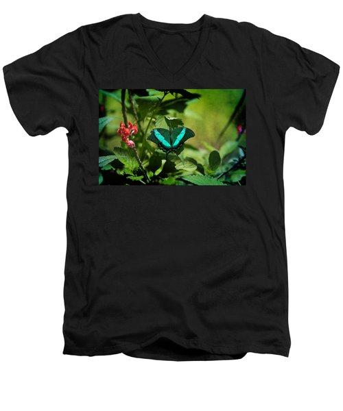 In A Butterfly World Men's V-Neck T-Shirt
