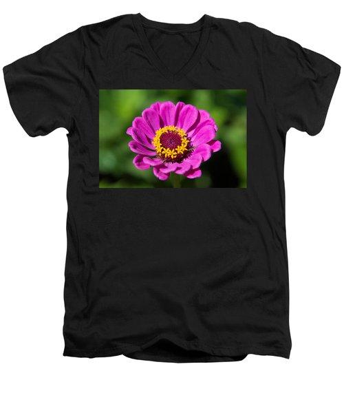 In A Summer Mood Men's V-Neck T-Shirt