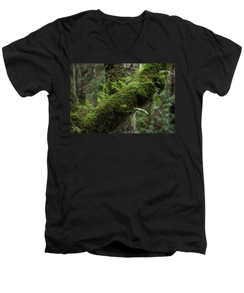 Men's V-Neck T-Shirt featuring the photograph In The Cool Of The Forest by Mike Eingle