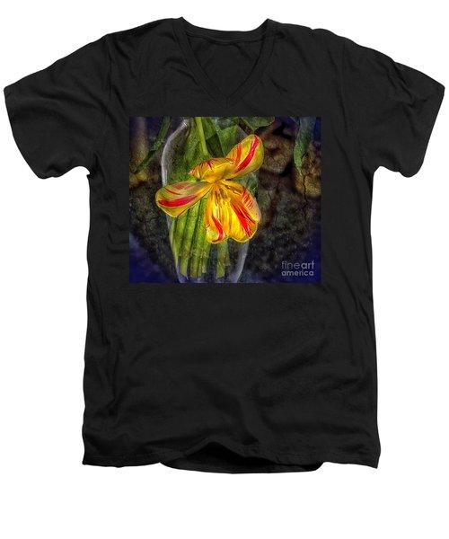 In The Light Of Dawn Men's V-Neck T-Shirt