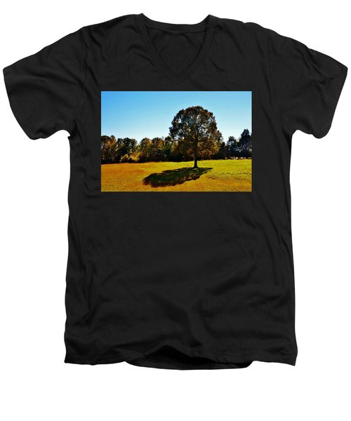 In The Shadow Of A Tree Men's V-Neck T-Shirt