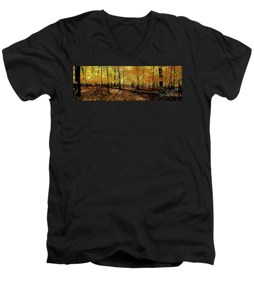 In The The Woods, Fall  Men's V-Neck T-Shirt