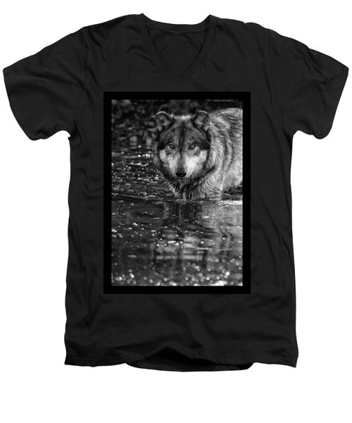 Men's V-Neck T-Shirt featuring the photograph Intense Reflection by Shari Jardina