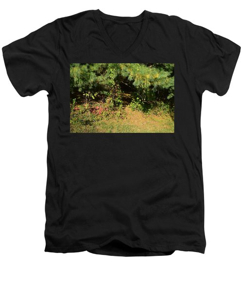 Into The Unknown 1 Men's V-Neck T-Shirt